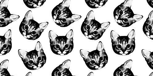 Twitter Background Hipster Cat Hipster Cat Twitter Headers