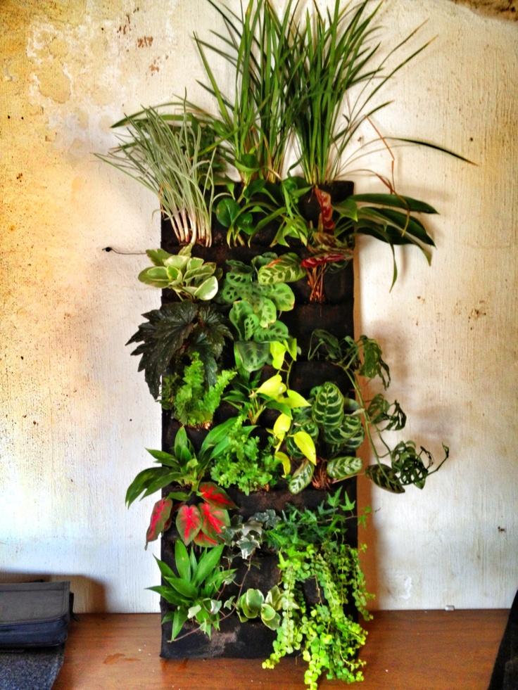 Vertical Garden Jardineria Pinterest