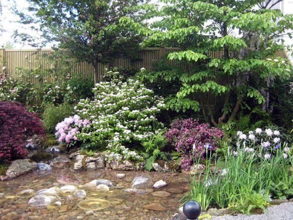 Shallow pond ponds pinterest for Shallow garden pond