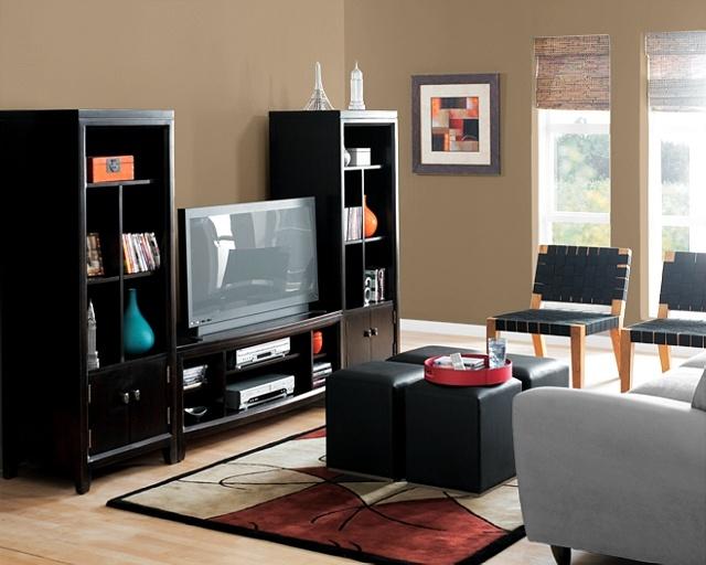 Tan Living Room Cool Design Inspiration