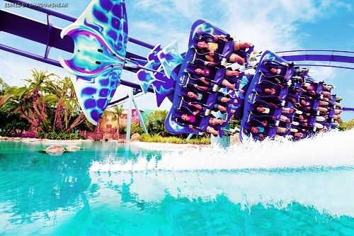 roller coasters :) #popular
