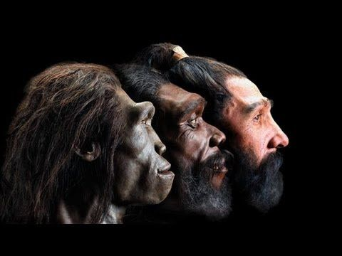 Pin by Rob Lowell on Genetic Explorations | Pinterest Neanderthal 1