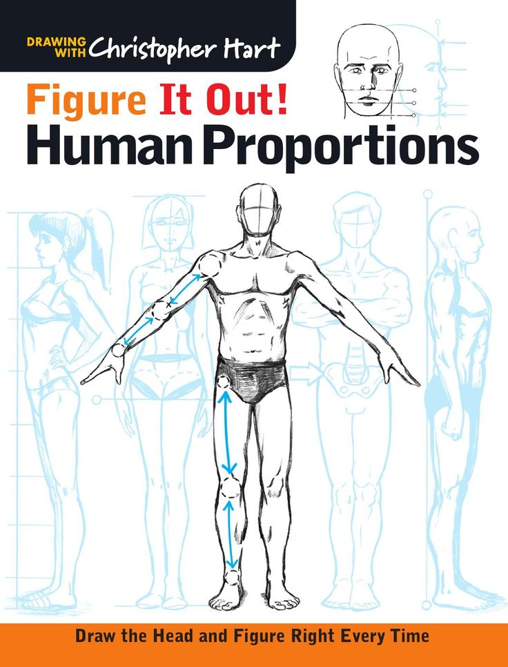 Encantador Human Anatomy Made Amazingly Easy Pdf Download Bosquejo