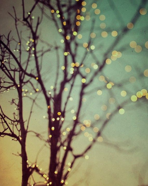 Christmas fairy lights tree art large wall art winter - Tree branches with lights ...