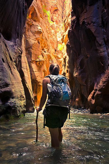 Into the Narrows by Ada Be, via Flickr    A 26km (16mi) journey through dramatic canyons carved over centuries by the Virgin River, the Narrows in Zion National Park is a hike like no other.    Read more: http://www.lonelyplanet.com/australia/tasmania/travel-tips-and-articles/76228#ixzz20stf0g5I