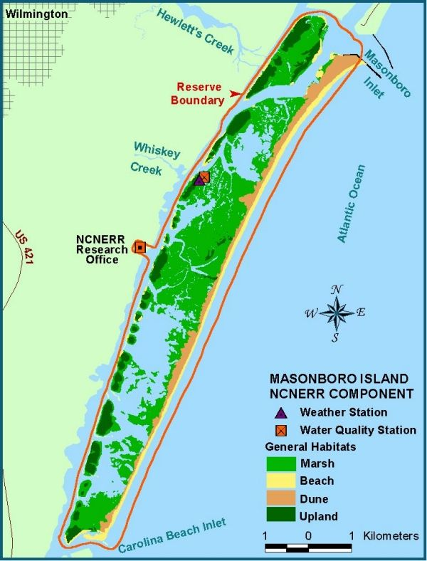 Before 1952,Masonboro was attached to the mainland.That year, Carolina Beach Inlet was cut, giving Carolina Beach a booming tourist fishing trade and creating the largest undisturbed barrier island on North Carolina's southern coast. Eight miles long, Masonboro Island consists of 5,046 acres,4,300 of which are tidal salt marshes and mud flats. Masonboro is part of the North Carolina National Estuarine Research Reserve, which also includes Zeke's Island south of Federal Point on Cape Fear River.