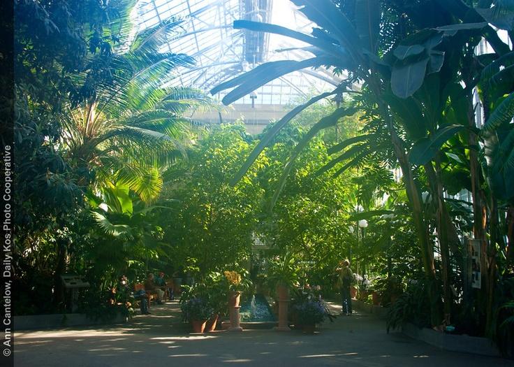 National Botanical Gardens Dc Secret Reception Ideas