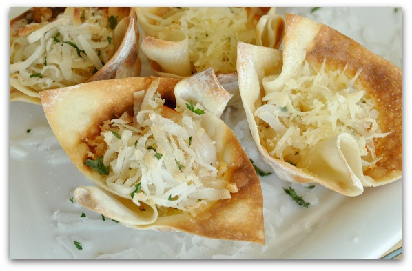 Crunchy Coconut Shrimp Wontons- I will make this with Chicken TONIGHT!