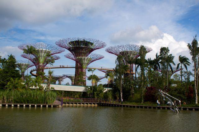 essay for singapore