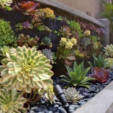 Vertical Garden Designsucculents Clever Gardens