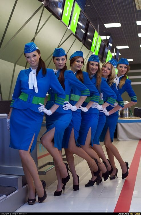 hottest flight attendants in pantyhose