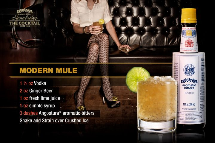 Modern Mule Vodka, Ginger beer, lime juice, simple syrup, Angostura ...
