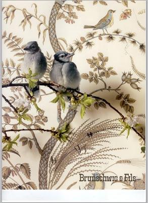Brunschwig fils wallpaper wallpaper pinterest for Cache fils mural