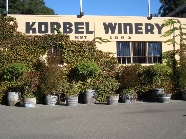 Korbel is well worth seeking out. They make so many types of Champagnes...something for everyone. And if you love history - this is your place! Lovely, lovely grounds.