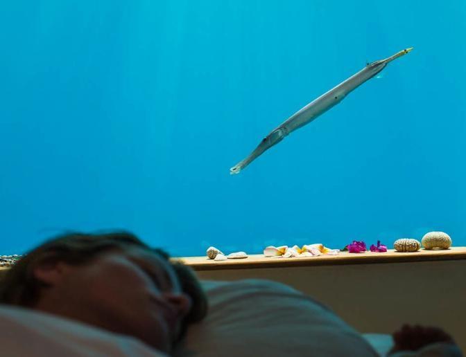 Underwater HotelUnderwater Hotel Room At Night