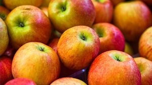 Use Apple Cider Vinegar for Energy
