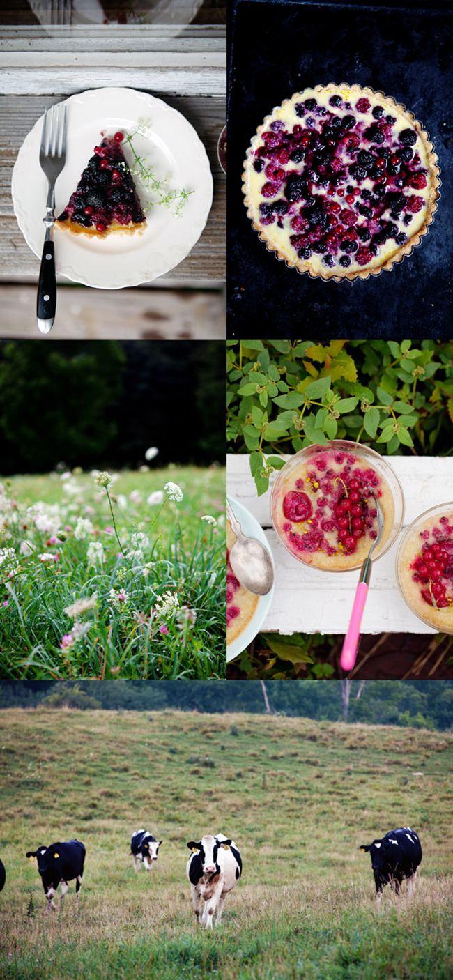 Summer days in Vermont {Summer Berry and Yogurt Tart}:: Cannelle et ...