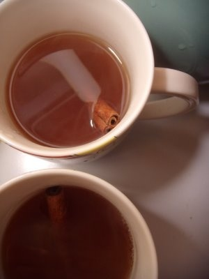 Bourbon Hot Tea Toddy | Tea Lust | Pinterest