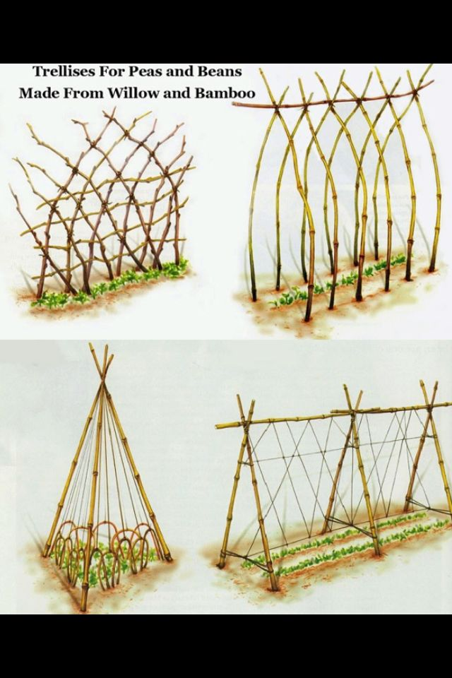 Diy trellis designs garden ideas pinterest for Garden trellis designs