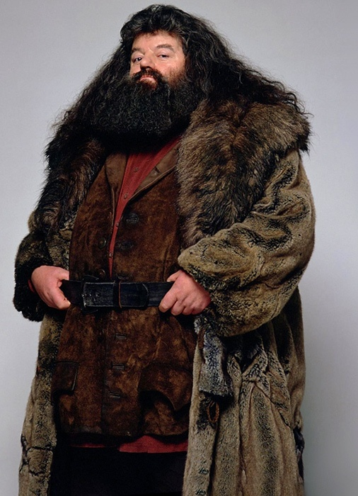 Hagrid- The friendly giant -frightening outward appearence -kind heart ...