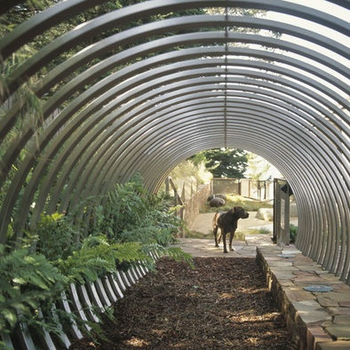dog run/greenhouse