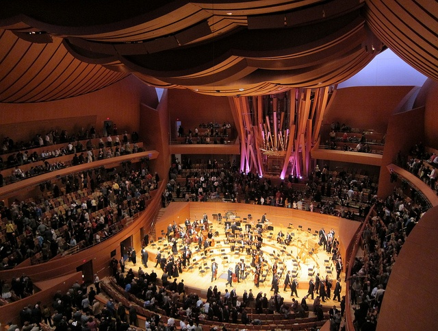 Interior of the Walt Disney Concert Hall in Los Angeles  Image credit    Walt Disney Concert Hall Interior