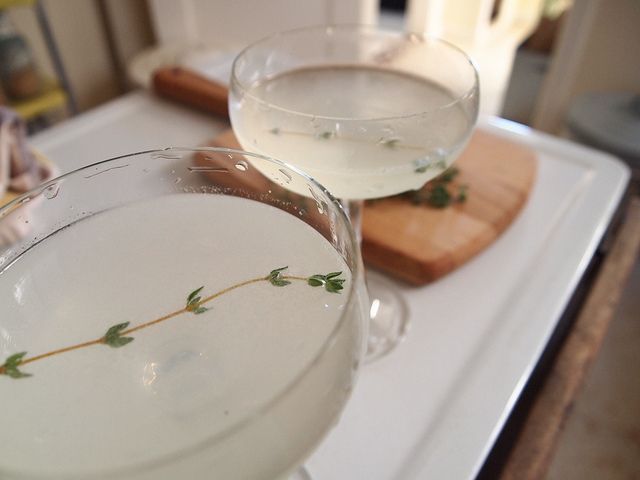 Lazy Thyme Cocktail | Gin, Lime Juice, Thyme & Tonic Water
