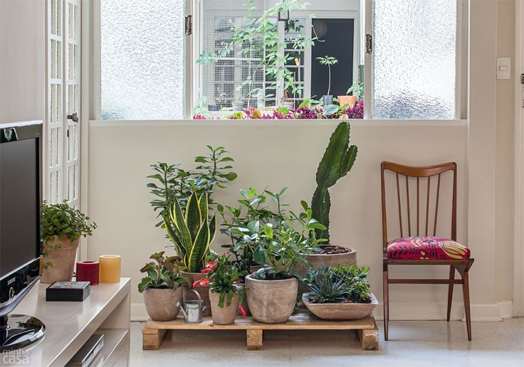 jardim vertical sacada : jardim vertical sacada:Indoor Planters with Stand