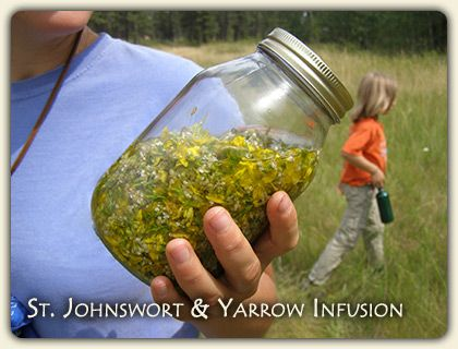 Online Herbal Remedies Advice - list of what different plants are good for