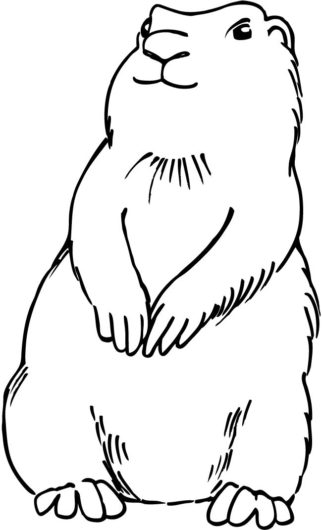 Prairie dog template for fuzz decorating animal for Prairie dog coloring page