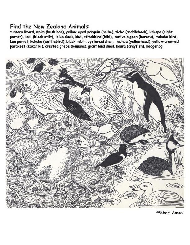 Hidden Animal Coloring Pages Hidden Animals Coloring Page