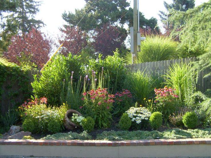 Garden design xeriscape : Xeriscaping idea backyard design ideas