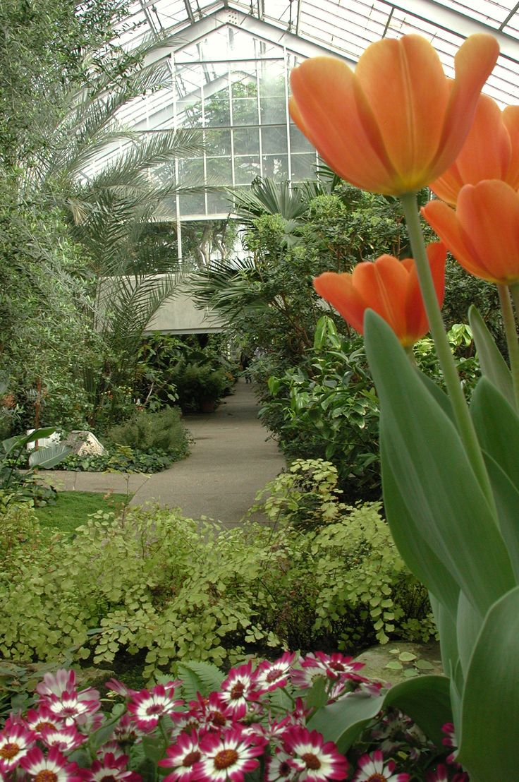 Matthaei Botanical Gardens Ann Arbor Mi Nature Pinterest