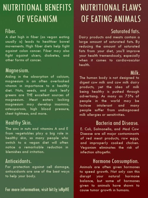 health benefits of vegetarian diets Recently, there has been a renewed interest in vegetarian diets today there are countless books, cookbooks, and magazine articles promoting vegetarian diets and providing guidance for those who wish to follow a meatless diet.