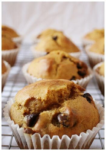 Pumpkin Chocolate Chip Muffins | Breakfast Food | Pinterest
