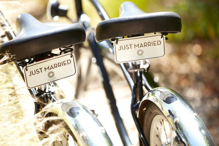 Just Married bike license plates