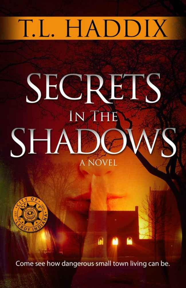 secrets in the shadows book review