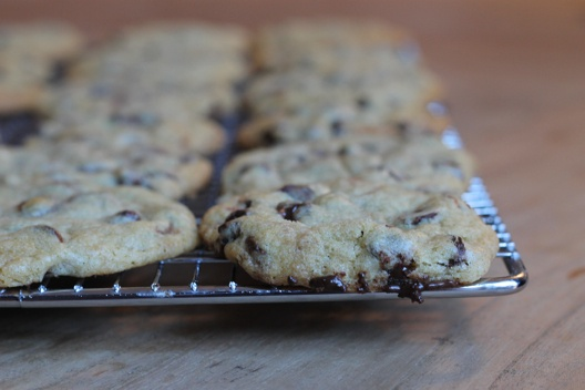 ... chocolate chip cookies chocolate chip cookies chocolate chip cookies
