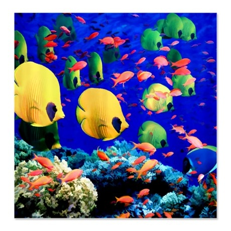 Undersea coral tropical fish shower curtain on for Tropical fish shower curtain