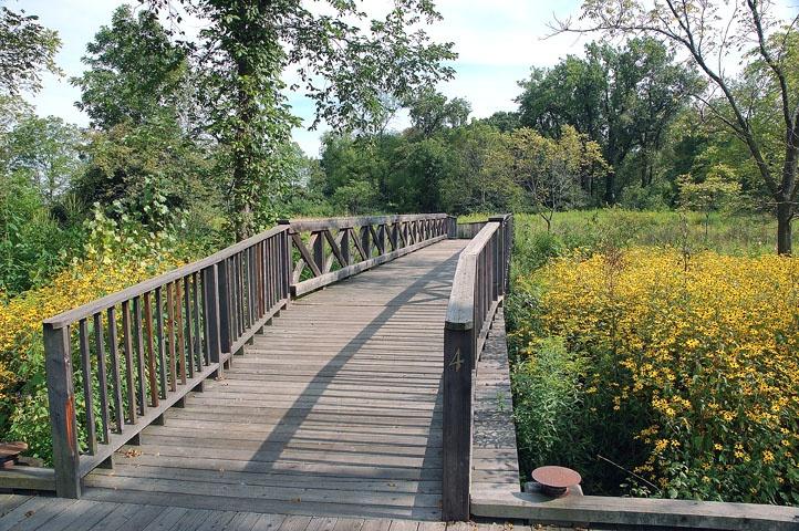 Backyard Nature Preserve :  backyard is this beautiful preserve areaCoffee Creek Nature Preserve