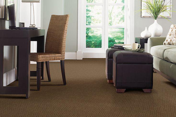 Brown carpet for living room ideas carpet ideas pinterest