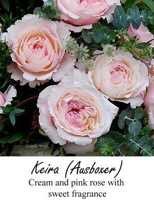 Blush Pink Garden Roses Wedding Floral Design Pinterest