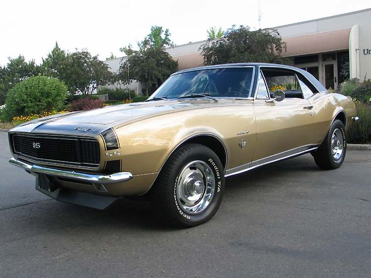 Mustang Z28 >> 1966 Chevy Camaro | Motorhead | Pinterest