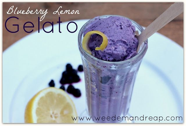 DIY Blueberry-Lemon Gelato! {guest post} - The Snap Mom