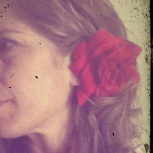a rose is rose