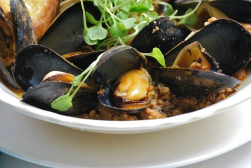 steamed mussels with chorizo, ramps and smoked paprika