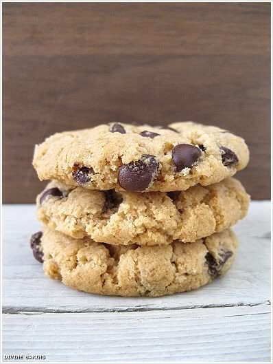 The Best Peanut Butter Cookie Ever (GF)- need a double recipe for sure ...