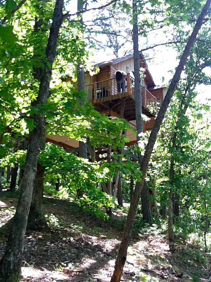 Tree house cottages eureka springs treehouse cottages for Tree house cabins arkansas