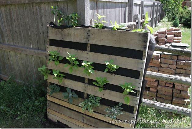 Vertical Pallet Garden IdeaCentral Pinterest