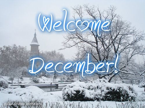 Image result for images of welcome december